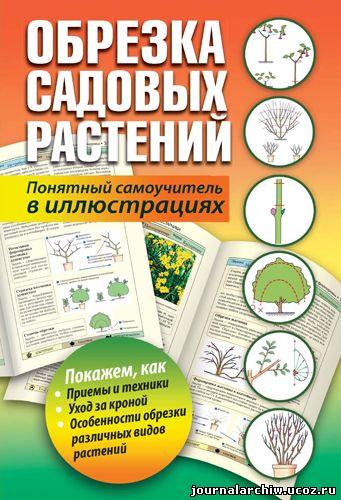 Скачать Обрезка садовых растений. Понятный самоучитель в иллюстрациях (2013) PDF